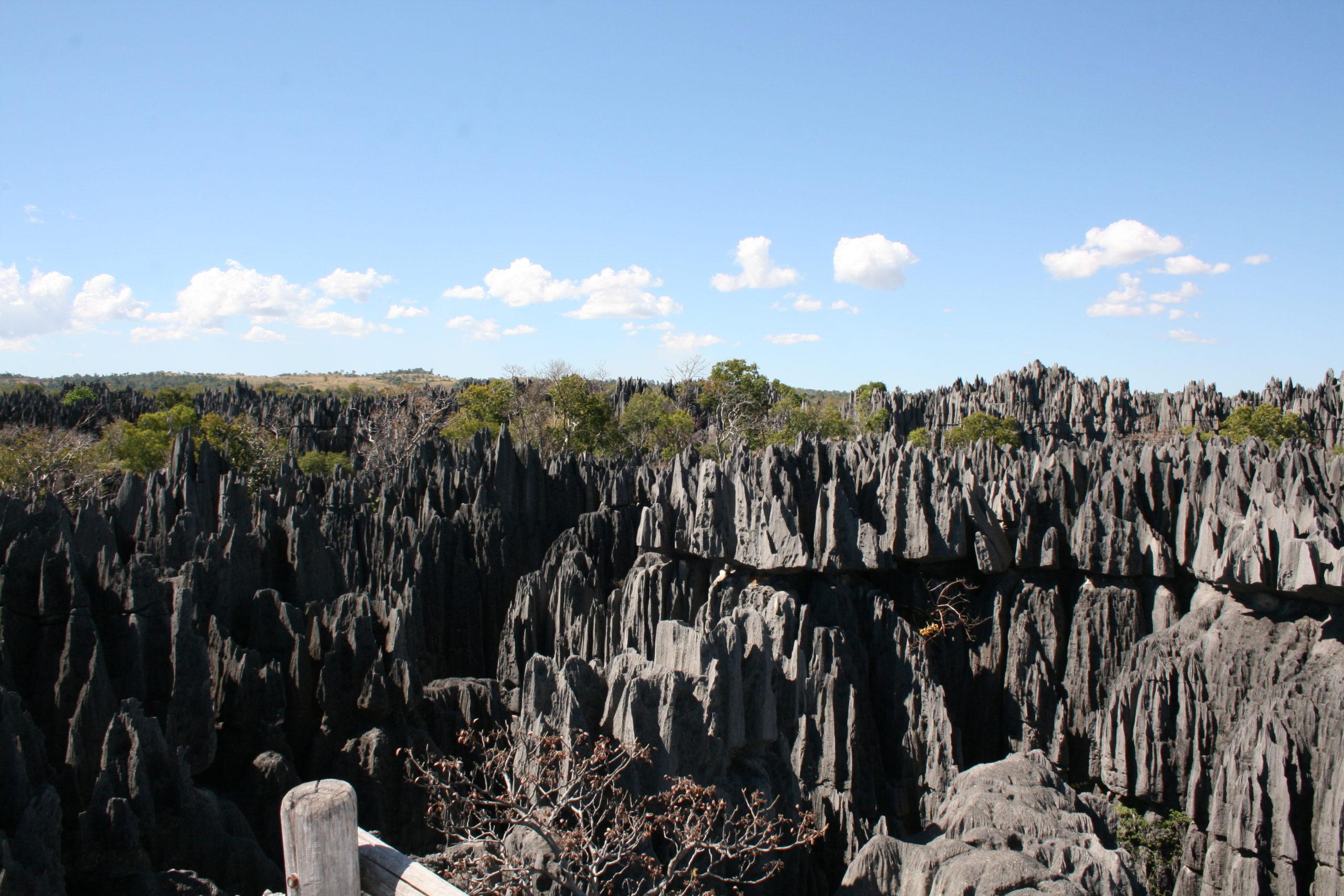 Le grand Tsingy Bemaraha