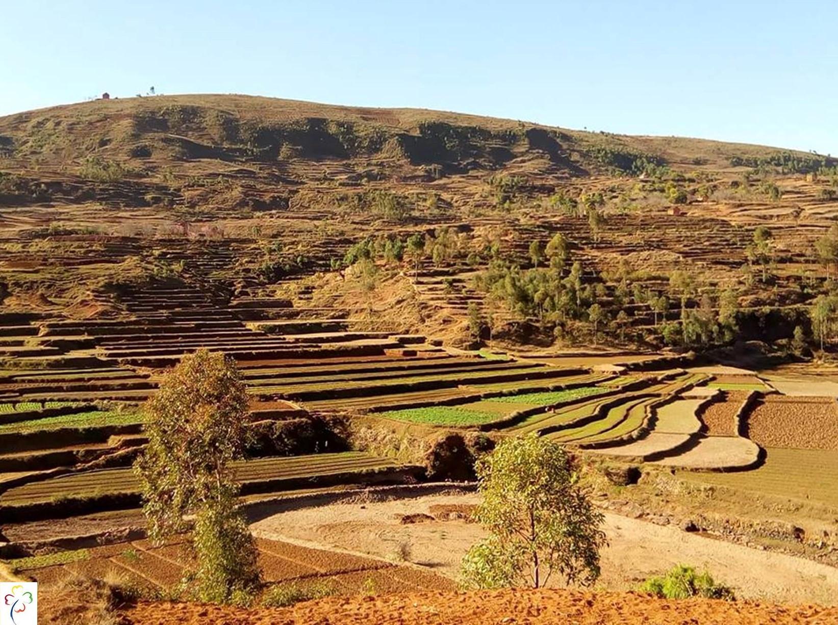 Paysages des hautes terres malgaches