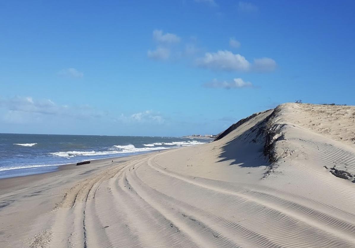 Entre plages et dunes