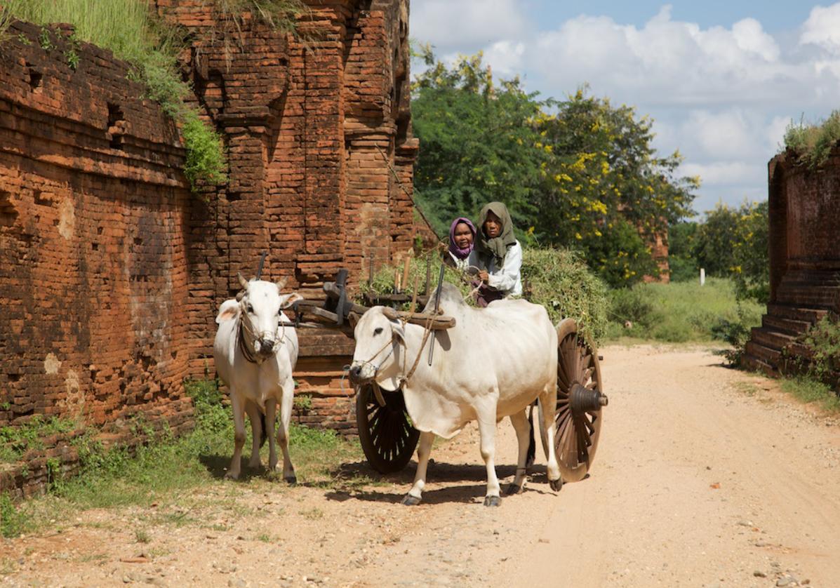 Scène traditionnelle dans le village de Minnanthu