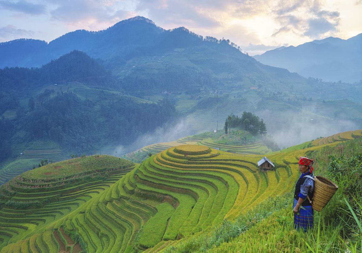 Paysages de montagnes à Muong Lo
