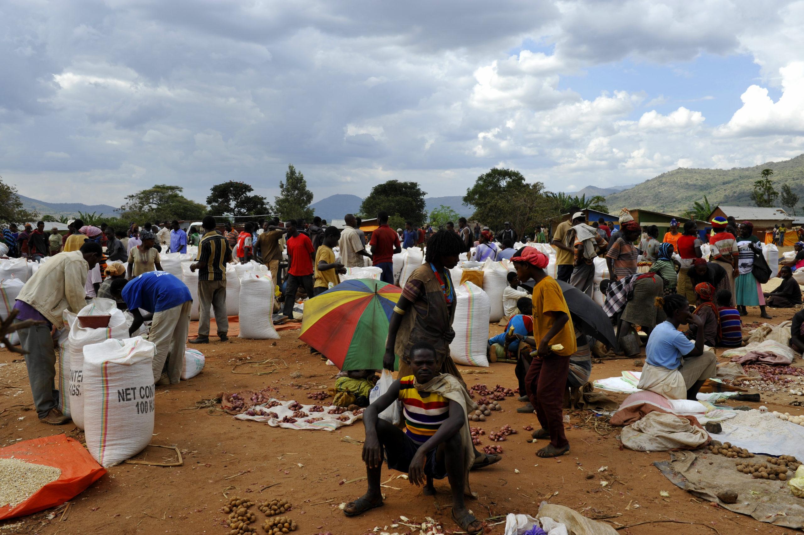 Les marchés au bord du lac Awassa