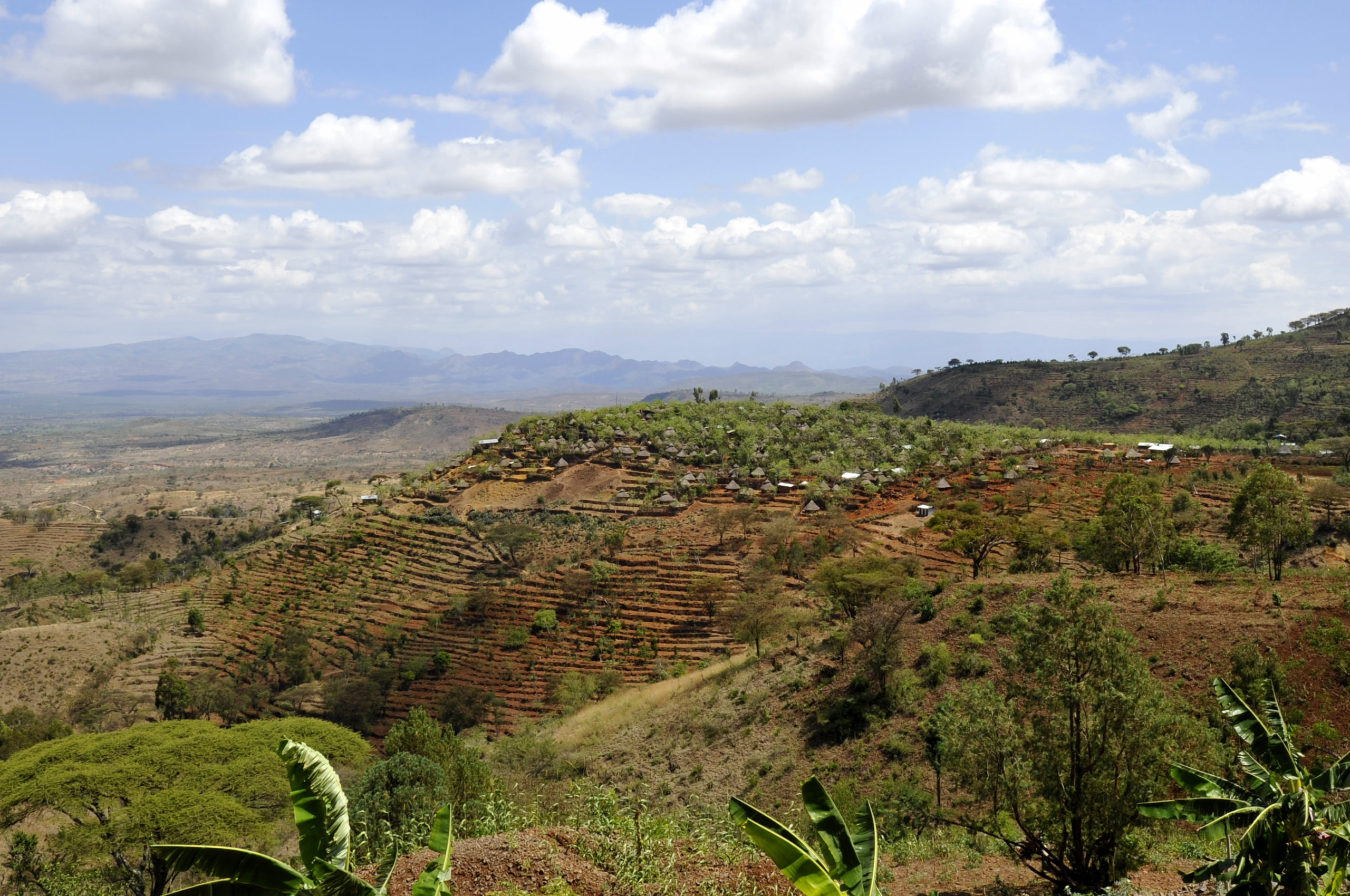 Paysages de la région du Tigré
