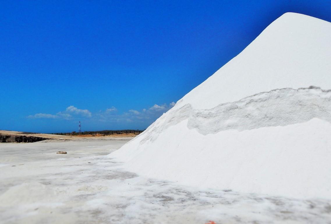 Traversée du désert de sel de Carrizal