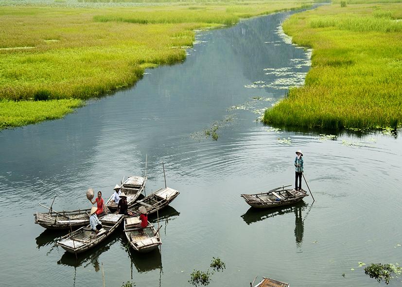 Sampans dans les canaux de Ninh Binh