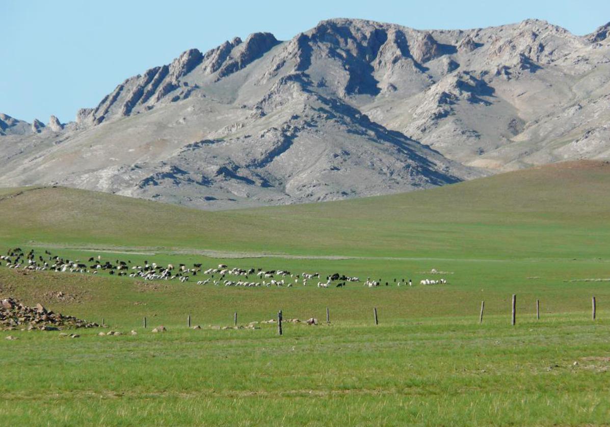 Parcourez les steppes mongoles