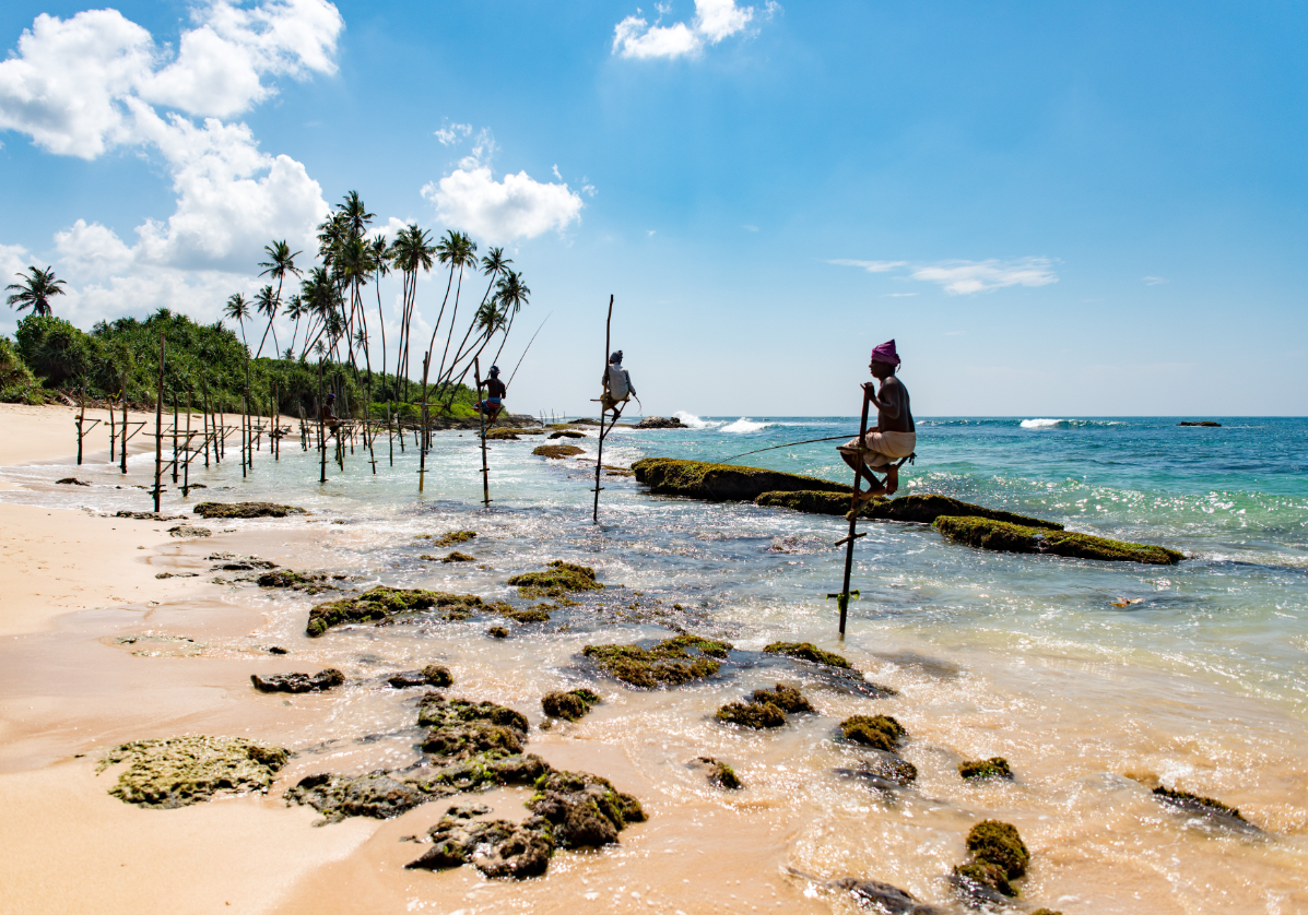 Mirissa plage de rêve sur l'océan Indien