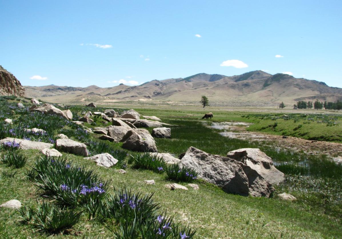 Des steppes mongoles à Oulan Bator