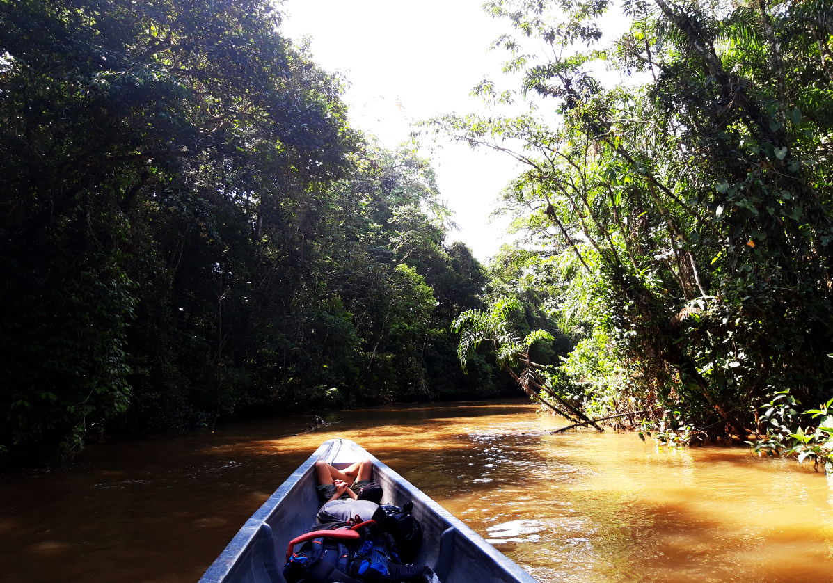 Canoë en foret amazonienne