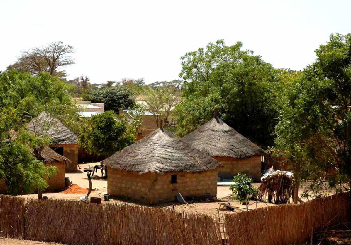 Rencontre avec les tribus Bassaris