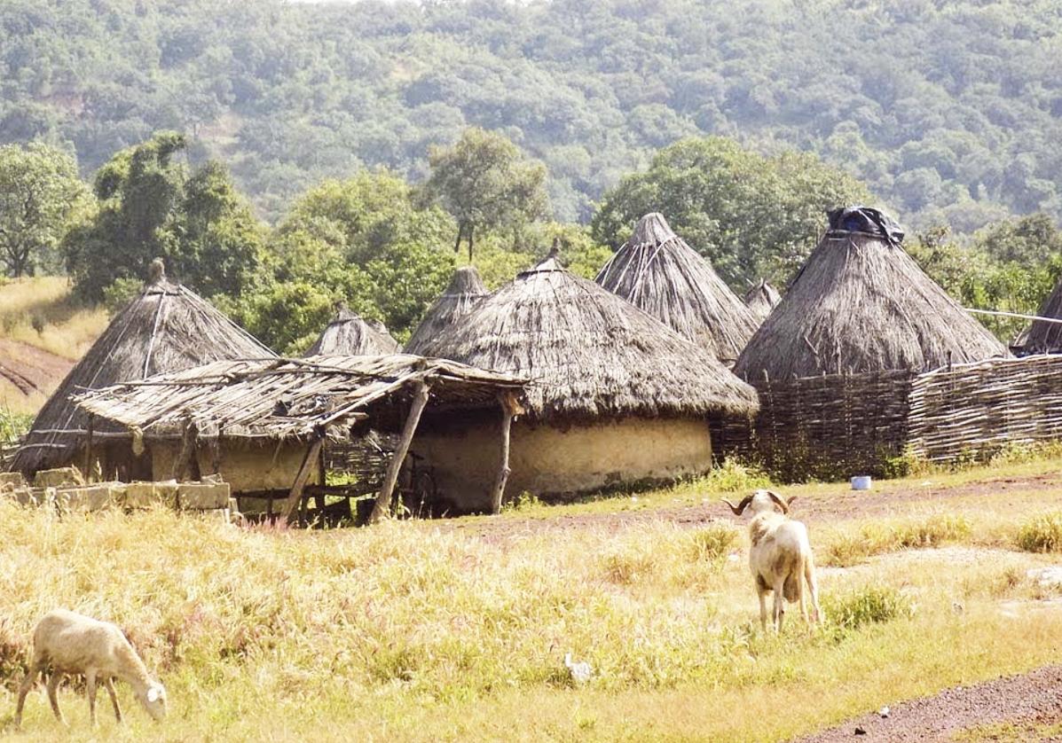 Rencontre avec les tribus des Malinkés