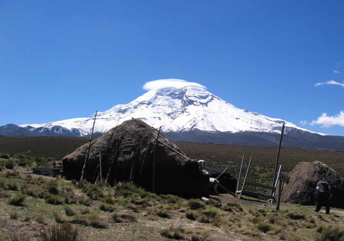 Exploration de la réserve faunique du Chimborazo