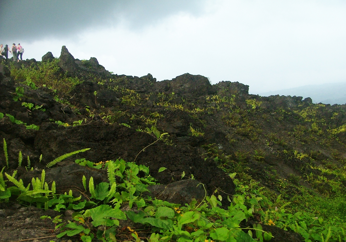 Limbé entre volcan et plages