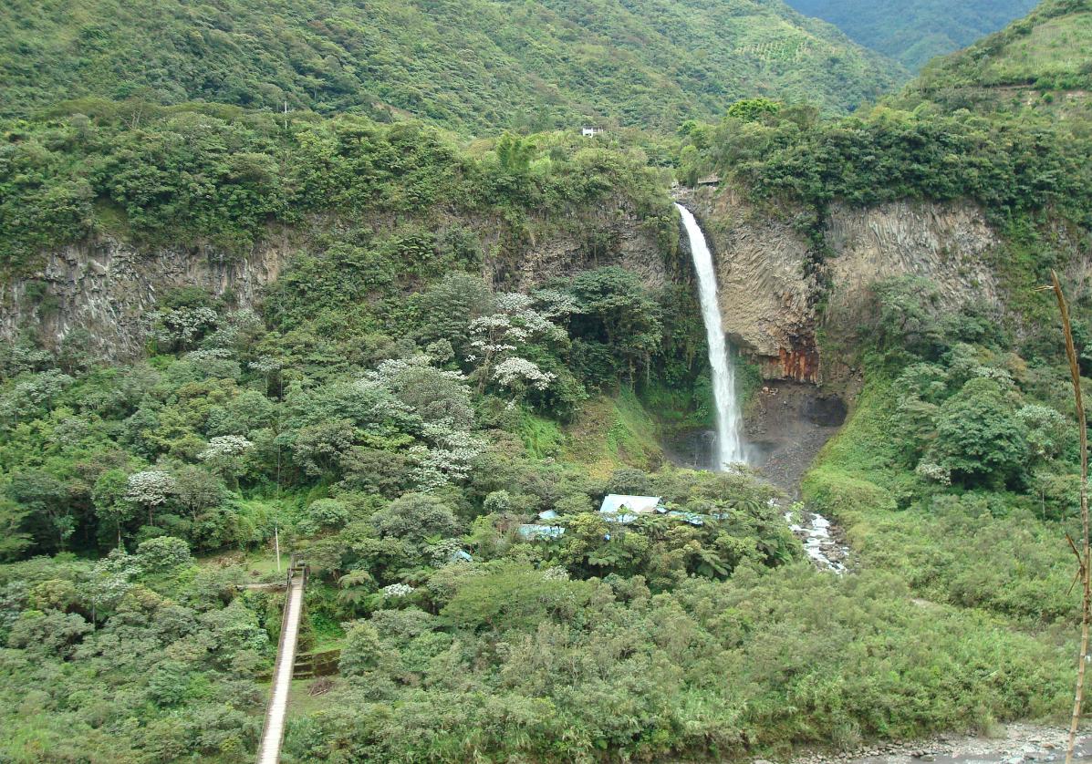 Randonnée dans la forêt humide