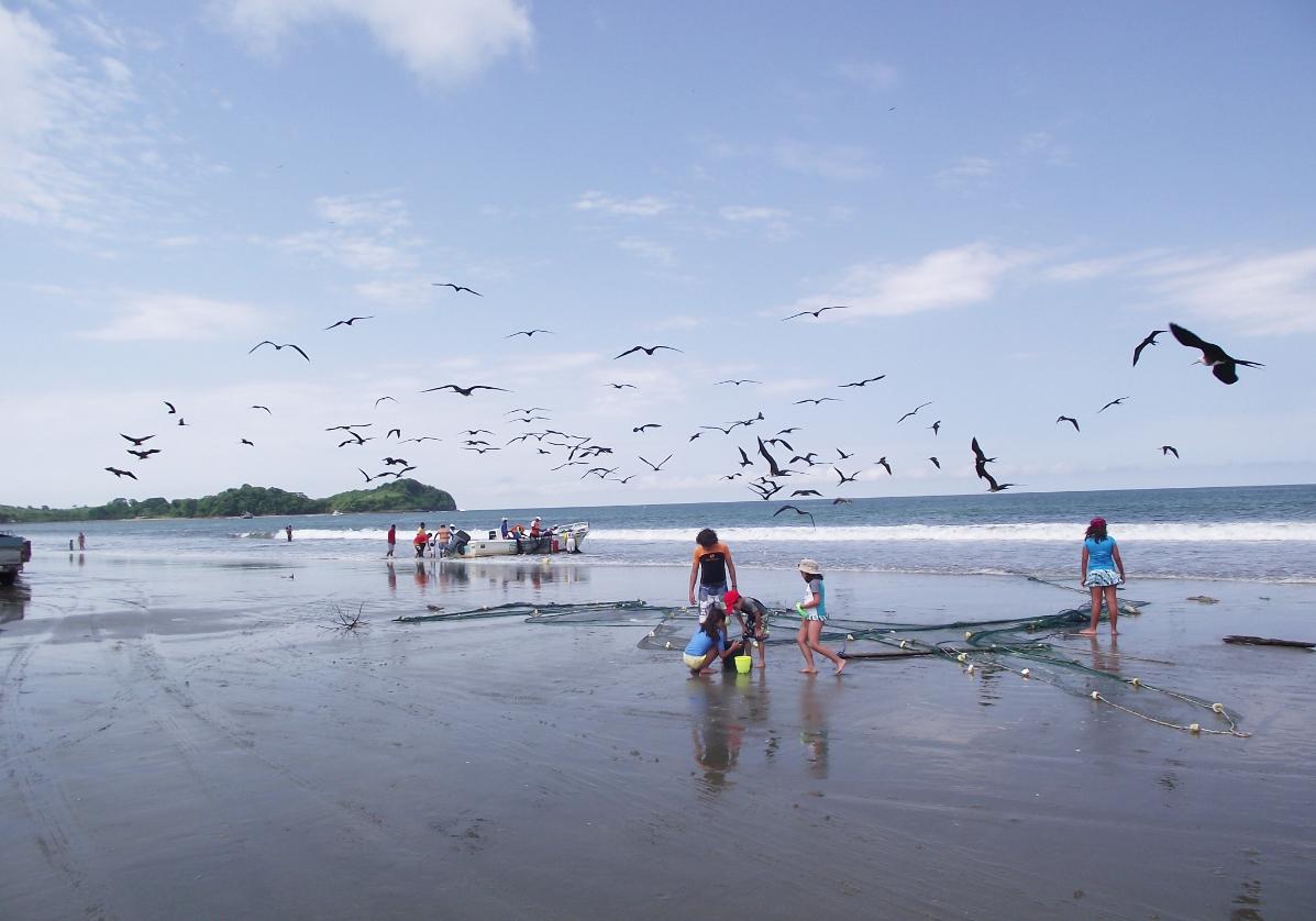 Nature, faune et flore à Isla de la Plata