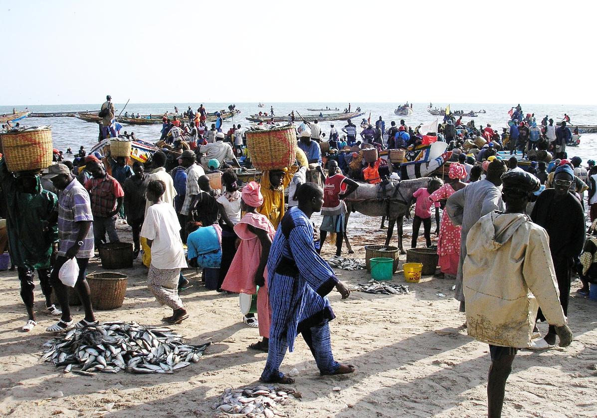 Mbour, le marché de poissons sur la plage