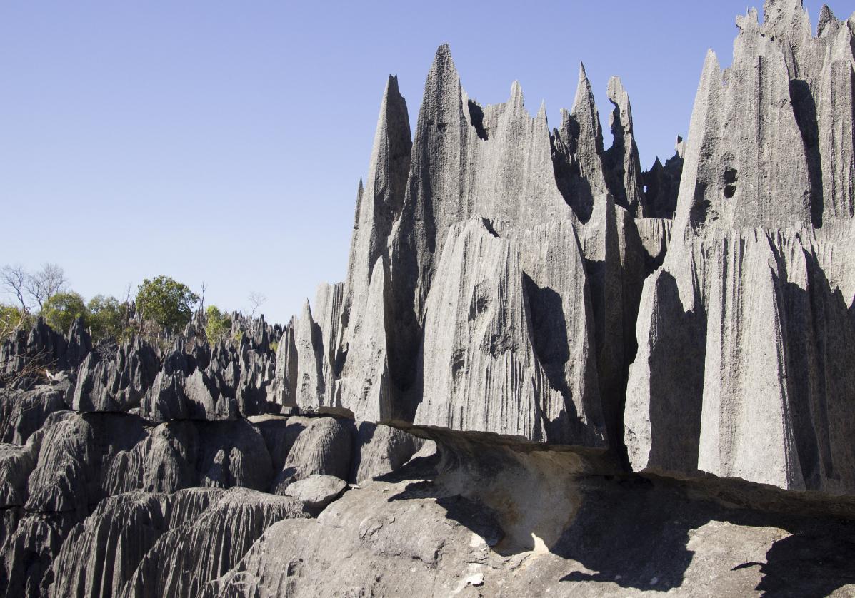 Les Tsingy dans le Parc National de Bemaraha