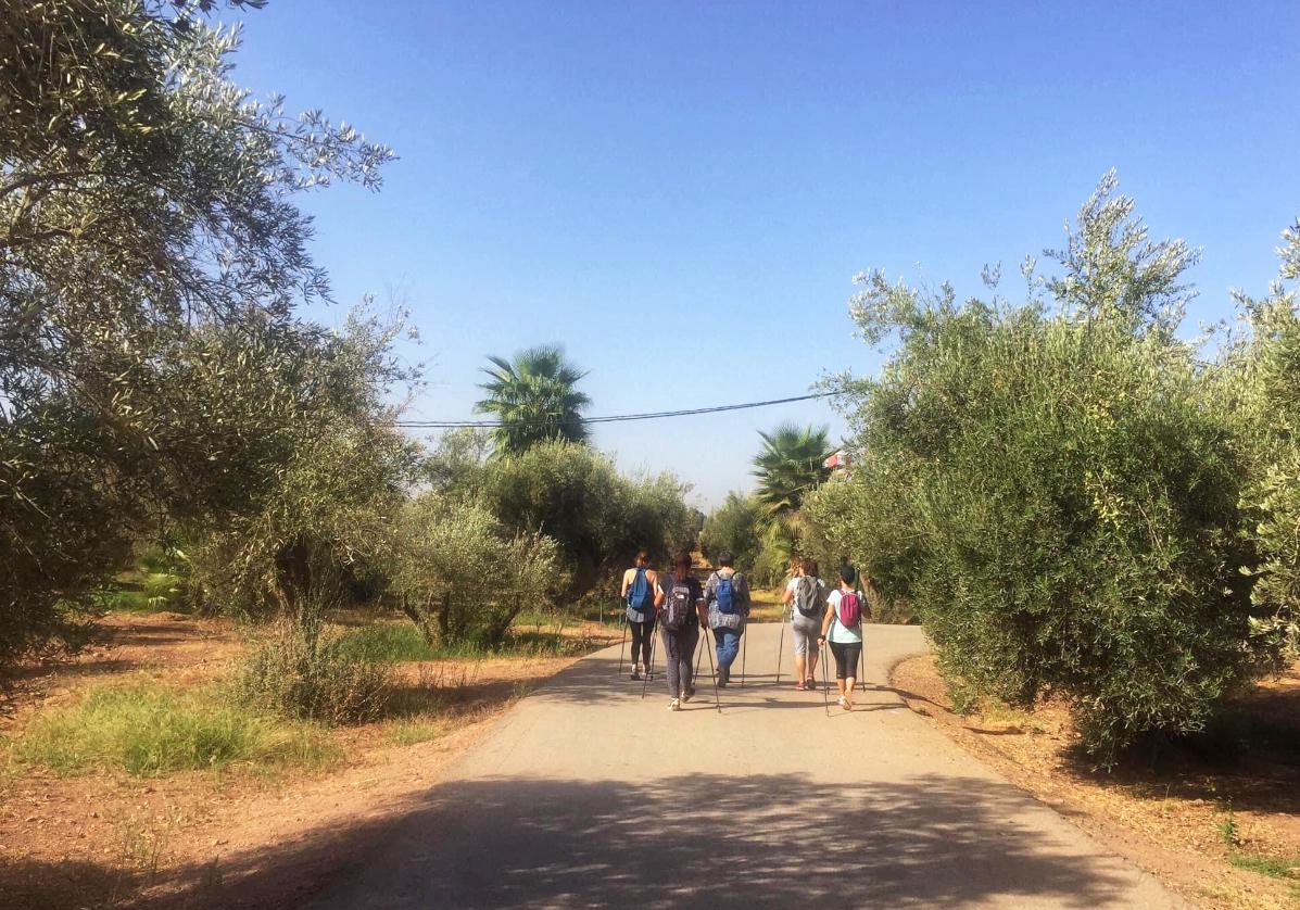 Visite de l'oasis et de la source de Zaouiat Cherrif