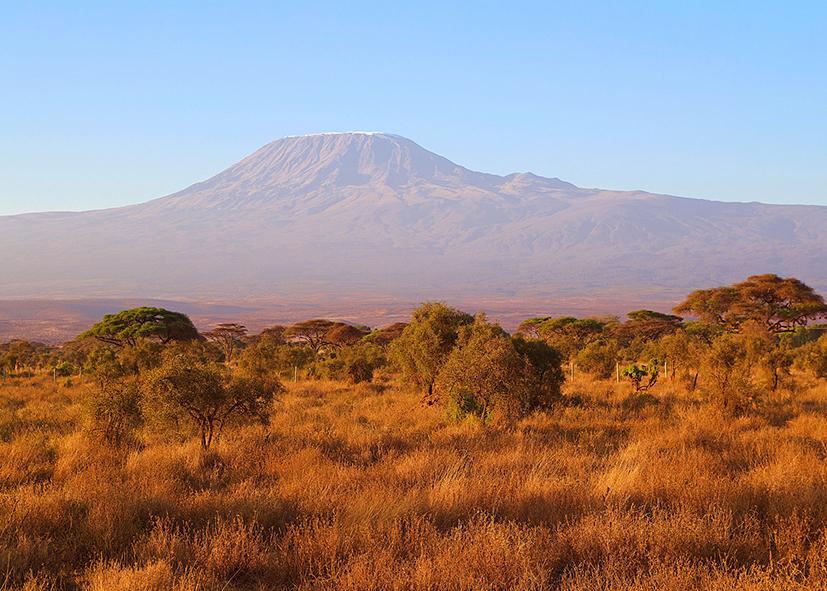 Panorama sur le Mont Kilimandjaro