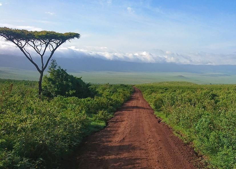 Sur les pistes de Tanzanie