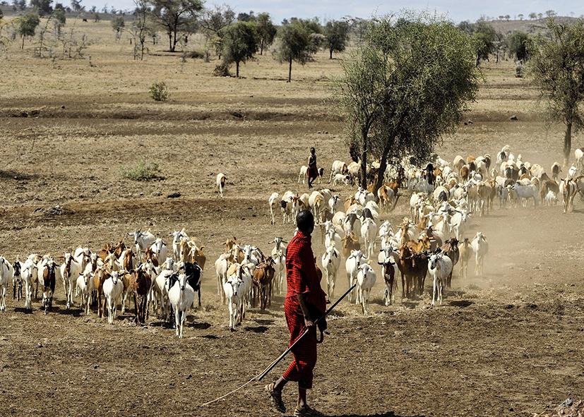 Berger et guide en pays Maasai