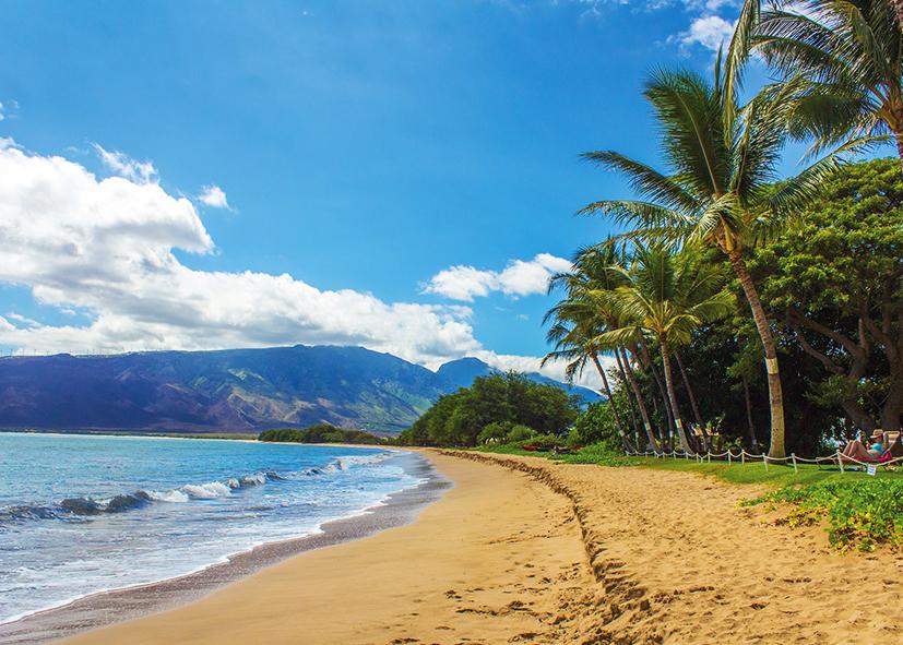 Plage de la côte Ouest de Maui