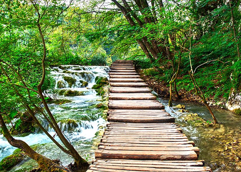 La nature dans le Parc National des lacs de Plitvice
