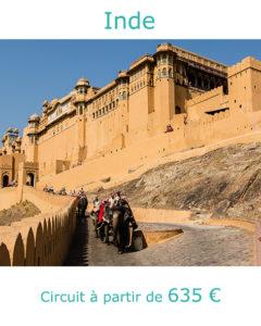 Eléphants dans la montée du Fort Amber à Jaipur, partir en Inde en octobre avec Nirvatravel