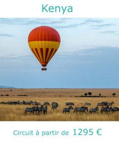 Zèbres dans la réserve de Maasai Mara, partir au Kenya en janvier avec Nirvatravel