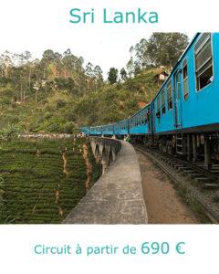 Train de Nuwara Eliya à Ceylan, partir au Sri Lanka en novembre avec Nirvatravel